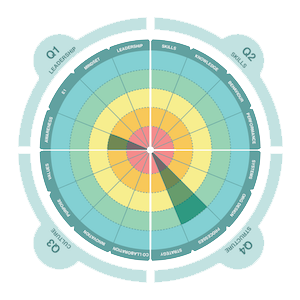 Four Quadrant Diagnostic